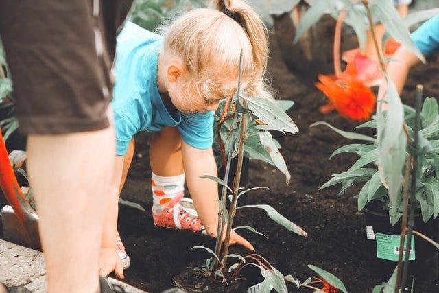 sysslor för barn trädgårdsarbete